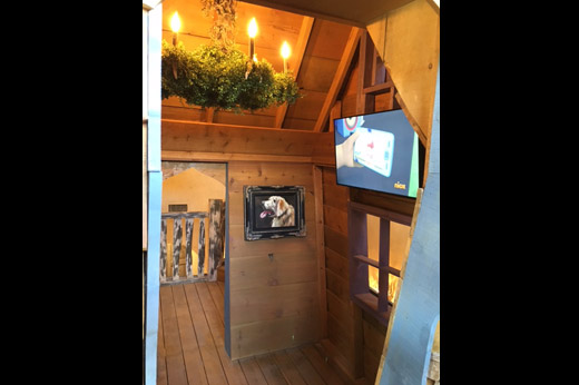 Castle Video Display